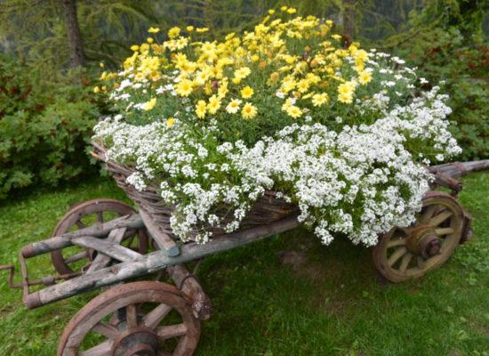 Lacasadi Lalla verde e fiori